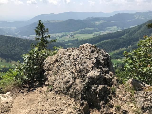 Juralandschaft - 20.07.2021