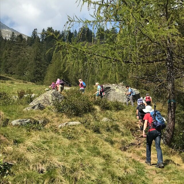 Aufstieg zur Grossalp 13.09.2021